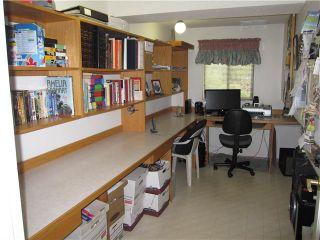 Photo 13: 20115 PATTERSON Avenue in Maple Ridge: Southwest Maple Ridge House for sale : MLS®# V1136191