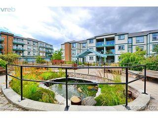 Photo 1: 403 894 Vernon Ave in VICTORIA: SE Swan Lake Condo for sale (Saanich East)  : MLS®# 579898