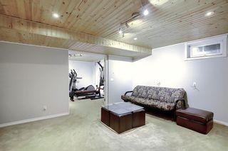 Photo 29: 36 MCKENNA RD SE in Calgary: McKenzie Lake Detached for sale : MLS®# C4300100