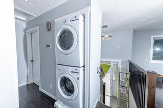 Photo 11: 280 Rundlefield Road NE in Calgary: Rundle Detached for sale : MLS®# A1142021