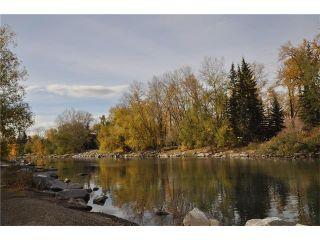 Photo 20: 301D 500 EAU CLAIRE Avenue SW in Calgary: Eau Claire Condo for sale : MLS®# C4043747