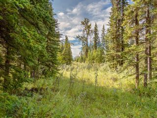 Photo 8: 8 34364 RANGE ROAD 42: Rural Mountain View County Land for sale : MLS®# A1017744