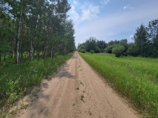 Photo 6: RR 222 TWP 504 LOT 1: Rural Leduc County Rural Land/Vacant Lot for sale : MLS®# E4254469