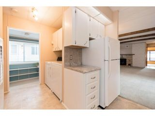 """Photo 9: 145 3665 244 Street in Langley: Otter District Manufactured Home for sale in """"Langley Grove Estates"""" : MLS®# R2346294"""