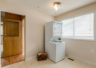 Photo 12: 3411 Doverthorn Road SE in Calgary: Dover Semi Detached for sale : MLS®# A1126939