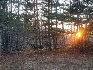 Photo 6: LOT MCNALLY Road in Victoria Harbour: 404-Kings County Vacant Land for sale (Annapolis Valley)  : MLS®# 201923444