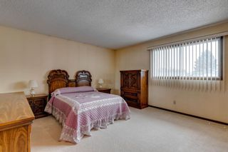 Photo 17: 147 Templevale Place NE in Calgary: Temple Detached for sale : MLS®# A1144568