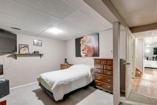 Photo 17: 10 Abalone Crescent NE in Calgary: Abbeydale Detached for sale : MLS®# A1072255