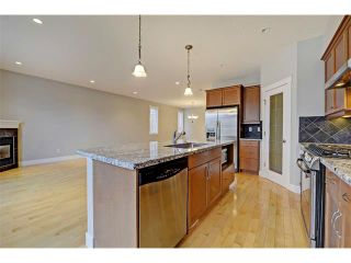 Photo 13: 176 MIKE RALPH Way SW in Calgary: Garrison Green House for sale : MLS®# C4091127