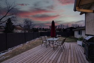 Photo 38: 164 Berwick Drive NW in Calgary: Beddington Heights Detached for sale : MLS®# A1095505