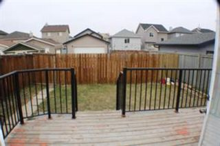 Photo 21: 131 Saddlemont Crescent NE in Calgary: Saddle Ridge Detached for sale : MLS®# A1133598
