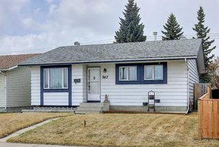 Photo 1: 367 Maitland Crescent NE in Calgary: Marlborough Park Detached for sale : MLS®# A1093291