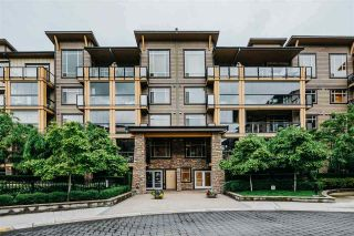 Photo 1: 356 8258 207A Street in Langley: Willoughby Heights Condo for sale : MLS®# R2485556