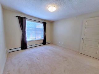 Photo 18: 438 6076 SCHONSEE Way in Edmonton: Zone 28 Condo for sale : MLS®# E4260047