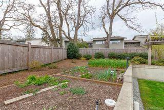 Photo 16: 309 982 McKenzie Ave in VICTORIA: SE Quadra Condo for sale (Saanich East)  : MLS®# 780785
