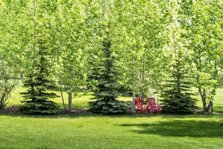 Photo 38: 9 Red Willow Crescent W: Rural Foothills County Detached for sale : MLS®# A1113275