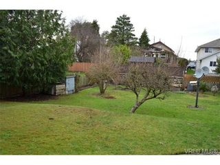 Photo 3: 3114 Donald St in VICTORIA: SW Tillicum House for sale (Saanich West)  : MLS®# 718451