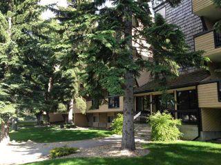Photo 10: 303 617 56 Avenue SW in CALGARY: Windsor Park Condo for sale (Calgary)  : MLS®# C3605417