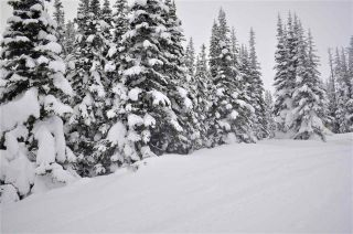 """Photo 3: 217 PRAIRIE Road in Smithers: Smithers - Rural Land for sale in """"Hudson Bay Mountain Resort"""" (Smithers And Area (Zone 54))  : MLS®# R2545464"""