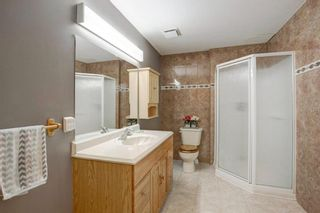 Photo 24: 56 Mckinley Rise SE in Calgary: McKenzie Lake Detached for sale : MLS®# A1073641