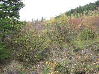 Photo 22: 80 Acres Creighton Valley Road, in Lumby: Vacant Land for sale : MLS®# 10239894