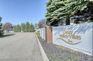 Photo 39: 124 Deer Ridge Close SE in Calgary: Deer Ridge Semi Detached for sale : MLS®# A1129488
