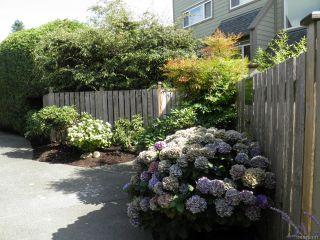 Photo 4: 102A 2250 Manor Pl in COMOX: CV Comox (Town of) Condo for sale (Comox Valley)  : MLS®# 823177
