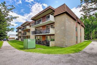 Photo 28: 78D 231 HERITAGE Drive SE in Calgary: Acadia Apartment for sale : MLS®# C4305999