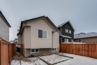 Photo 27: 399 Saddlebrook Way in Calgary: Saddle Ridge Detached for sale : MLS®# A1065807