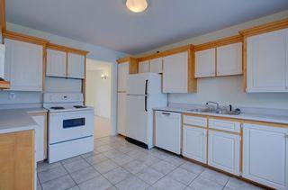 Photo 13: 172 Old Sambro Road in Halifax: 7-Spryfield Multi-Family for sale (Halifax-Dartmouth)  : MLS®# 202015684