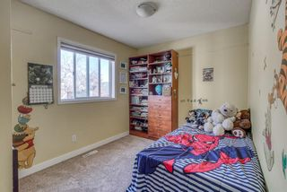 Photo 17: 10 Inverness Place SE in Calgary: McKenzie Towne Detached for sale : MLS®# A1095594