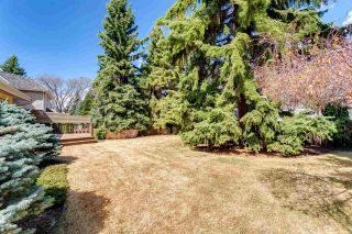 Photo 42: 49 MARLBORO Road in Edmonton: Zone 16 House for sale : MLS®# E4241038