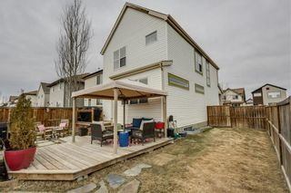 Photo 25: 104 COPPERSTONE Circle SE in Calgary: Copperfield House for sale : MLS®# C4179675