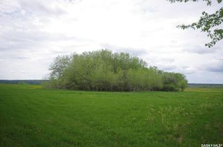 Photo 22: Weiss Lakefront Acreage in Big River: Lot/Land for sale : MLS®# SK834150