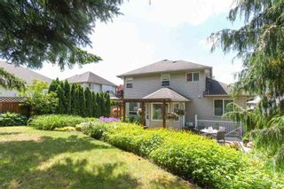 Photo 16: 6820 181 STREET in Cloverdale: Home for sale : MLS®# R2178025