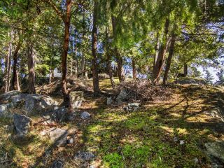 Photo 5: 2378 Andover Rd in NANOOSE BAY: PQ Fairwinds Land for sale (Parksville/Qualicum)  : MLS®# 837735