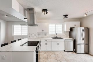 Photo 6: 18 Erin Meadow Close SE in Calgary: Erin Woods Detached for sale : MLS®# A1143099