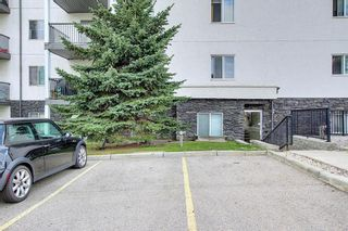 Photo 6: 207 33 Arbour Grove Close NW in Calgary: Arbour Lake Apartment for sale : MLS®# A1135288