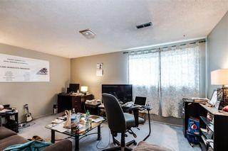 Photo 16: 4823 1 Street NE in Calgary: Greenview Detached for sale : MLS®# C4306006