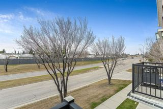 Photo 6: 92 92 Erin Woods Court SE in Calgary: Erin Woods Apartment for sale : MLS®# A1153347