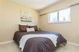 """Photo 20: 4516 199A Street in Langley: Langley City House for sale in """"Mason Heights"""" : MLS®# R2570140"""