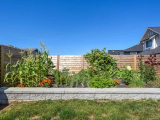 Photo 38: 4071 Chancellor Cres in COURTENAY: CV Courtenay City House for sale (Comox Valley)  : MLS®# 821750