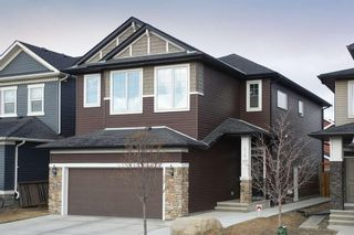 Main Photo: 419 Evansglen Drive NW in Calgary: Evanston Detached for sale : MLS®# A1095039