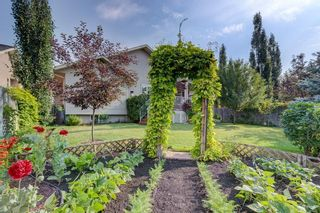 Photo 27: 113 Bailey Ridge Place SE: Turner Valley House for sale : MLS®# C4126622