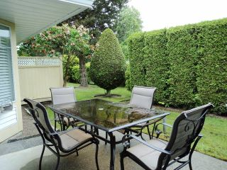 Photo 10: # 81 21138 88TH AV in Langley: Walnut Grove Townhouse for sale : MLS®# F1312902