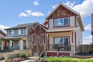 Main Photo: 132 Copperpond Park SE in Calgary: Copperfield Detached for sale : MLS®# A1149374