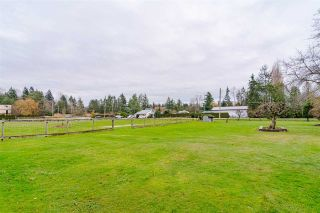 Photo 17: 19925 12 Avenue in Langley: Campbell Valley House for sale : MLS®# R2423986