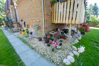 Photo 16: 12014 12018 69 Street in Edmonton: Zone 06 House Duplex for sale : MLS®# E4256064