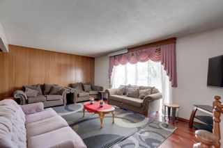 Photo 6: 2140 8 Avenue NE in Calgary: Mayland Heights Detached for sale : MLS®# A1115319