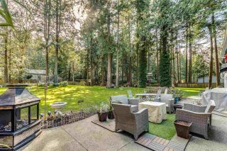 Photo 19: 14124 CRESCENT Road in Surrey: Elgin Chantrell House for sale (South Surrey White Rock)  : MLS®# R2552873